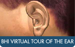 BHI Virtual Tour of the Ear