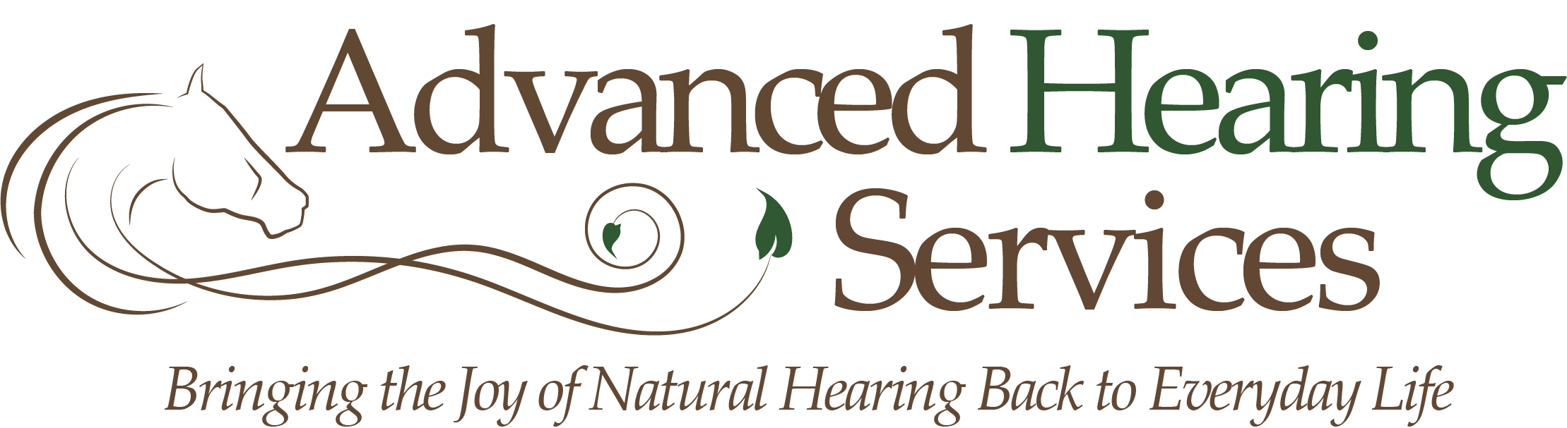 Advanced Hearing Services LLC
