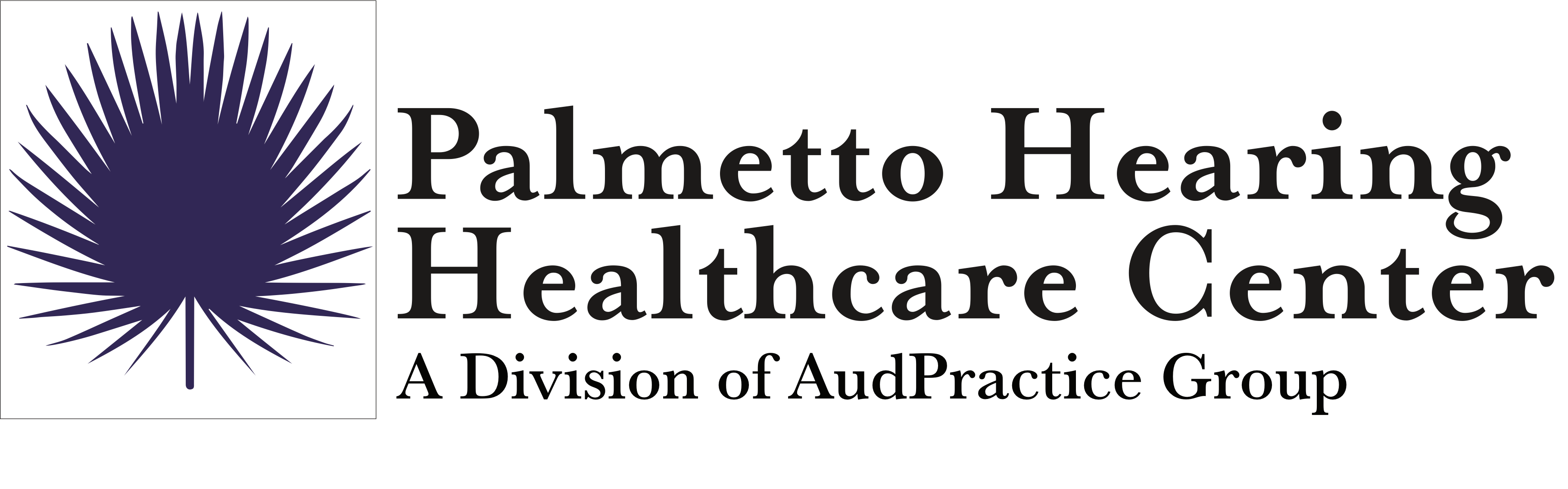 Palmetto Hearing Healthcare Center